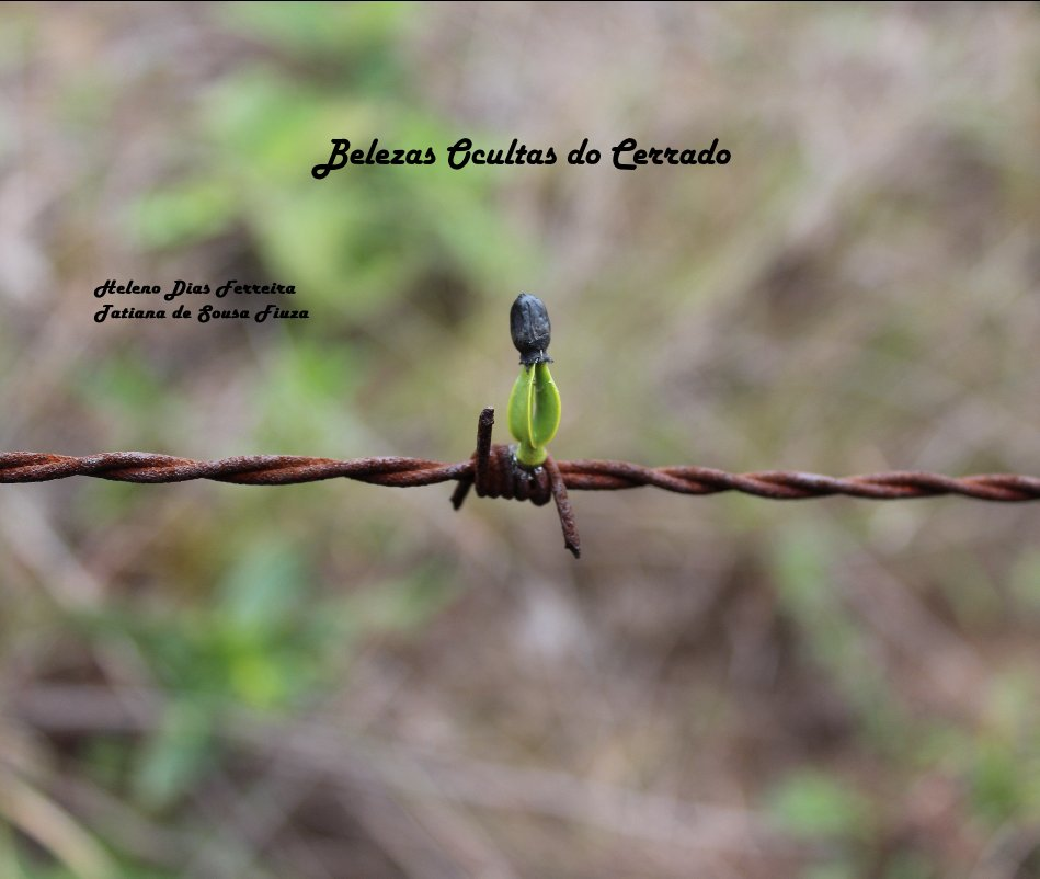 Ver Belezas Ocultas do Cerrado por Heleno Dias Ferreira e Tatiana de Sousa Fiuza