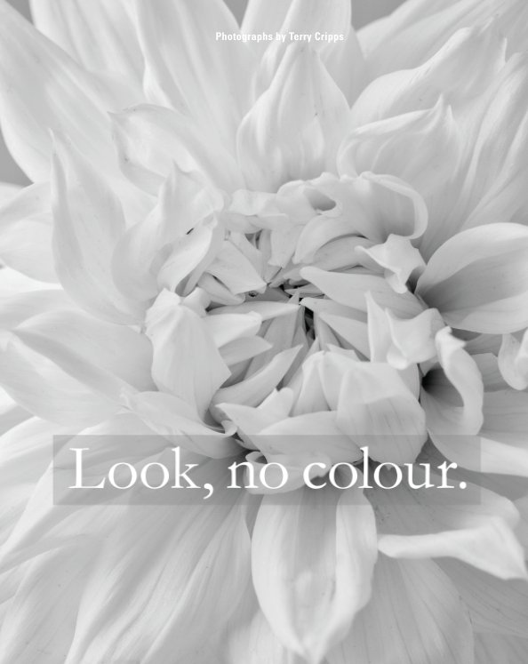 View Look, no colour by Terry Cripps