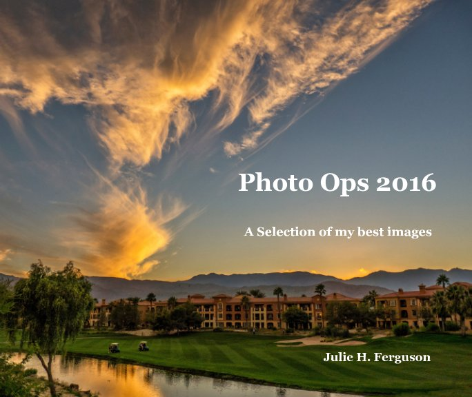 View PHOTO OPS 2016 by Julie H. Ferguson