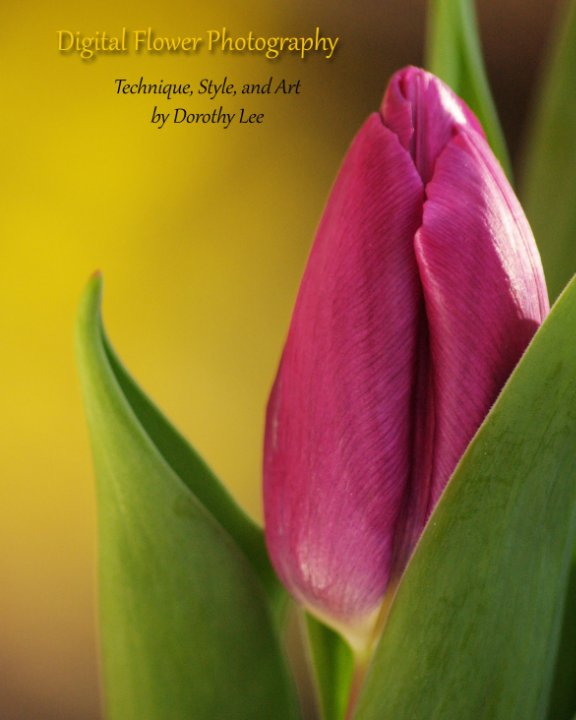 View Digital Flower Photography by Dorothy Lee
