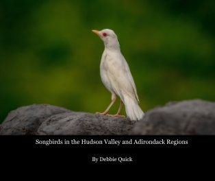 Songbirds in the Hudson Valley and Adirondack Regions