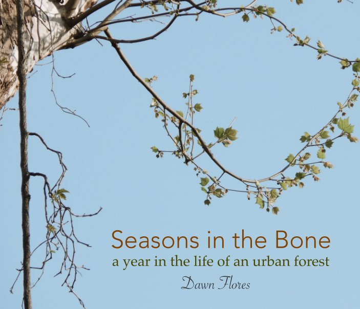View Seasons in the Bone by Dawn Flores