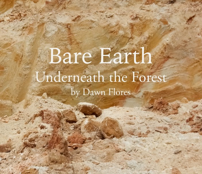 View Bare Earth by Dawn Flores