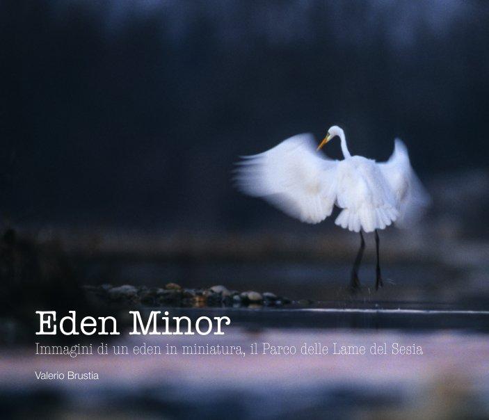 Visualizza Eden Minor di Valerio Brustia