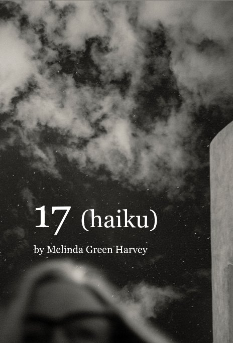 View 17 (haiku) by Melinda Green Harvey