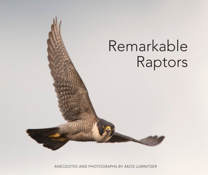 View Remarkable Raptors - Paperback SML by Ákos Lumnitzer