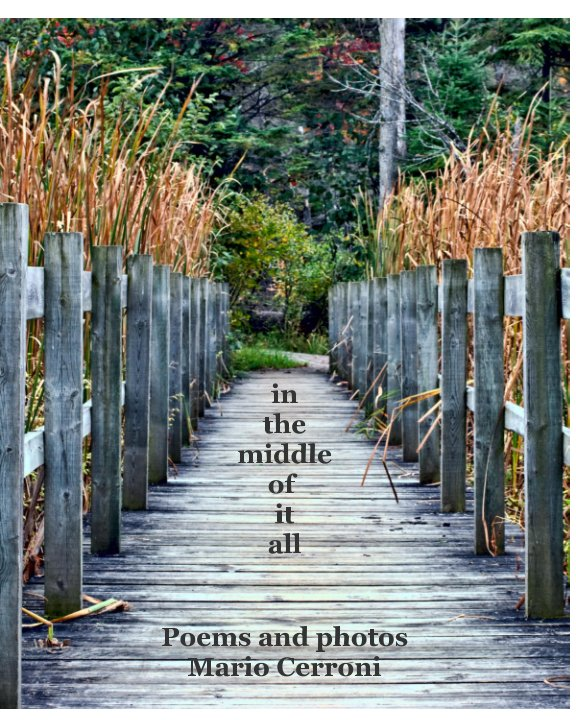View in the middle of it all by Mario Cerroni