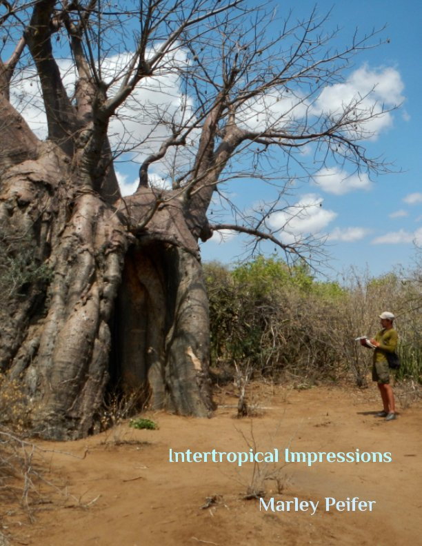 View Intertropical Impressions by Marley Peifer
