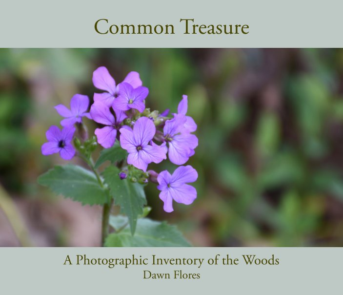 View Common Treasure by Dawn Flores
