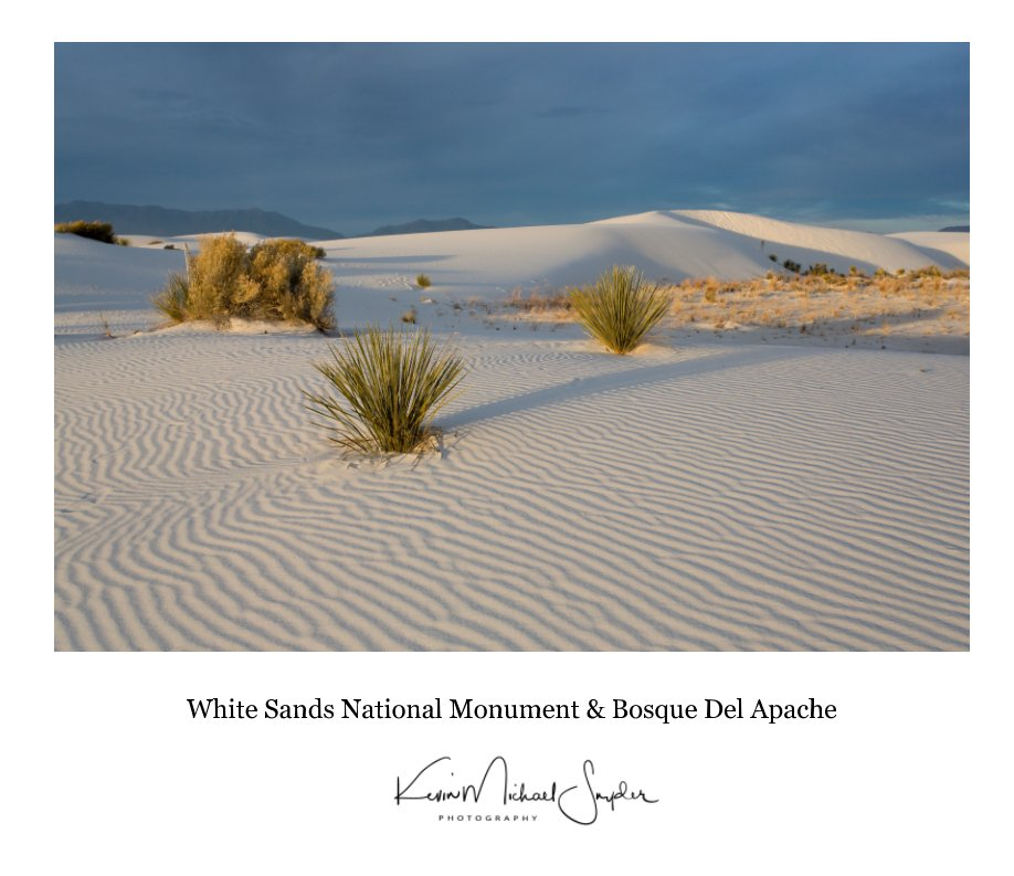 View White Sands National Monument and Bosque Del Apache 2016 by kevin michael snyder