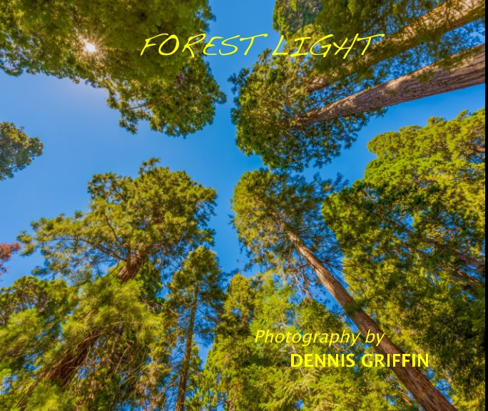 View FOREST LIGHT by DENNIS GRIFFIN