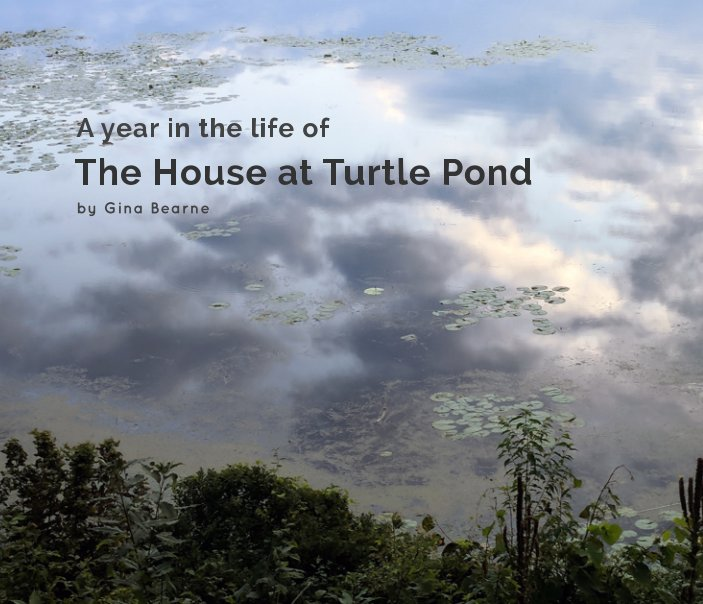 View A year in the life of the house at Turtle Pond by Gina Bearne