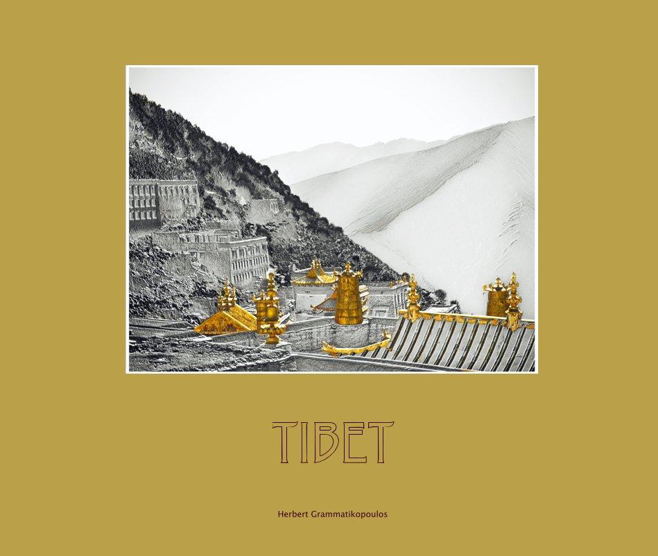 View TIBET by Herbert Grammatikopoulos