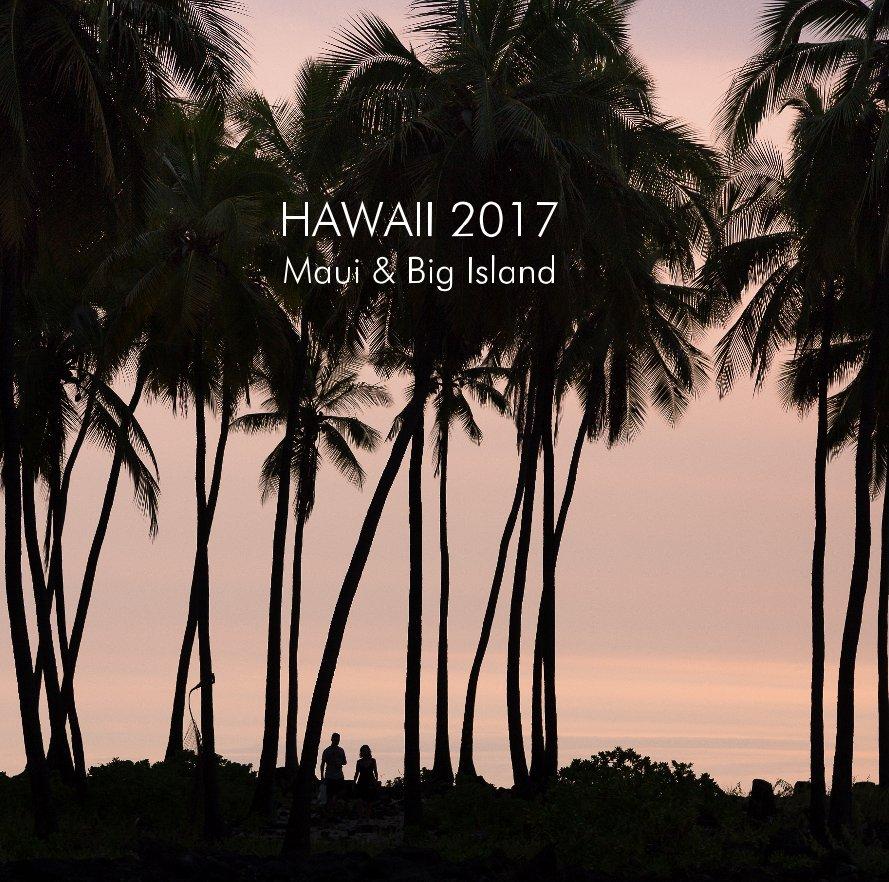 Bekijk HAWAII 2017 op Paulien Varkevisser