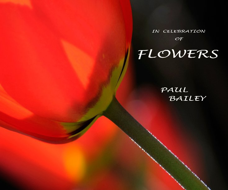 View IN CELEBRATION OF FLOWERS by PAUL BAILEY