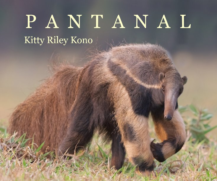 View P A N T A N A L by Kitty Riley Kono