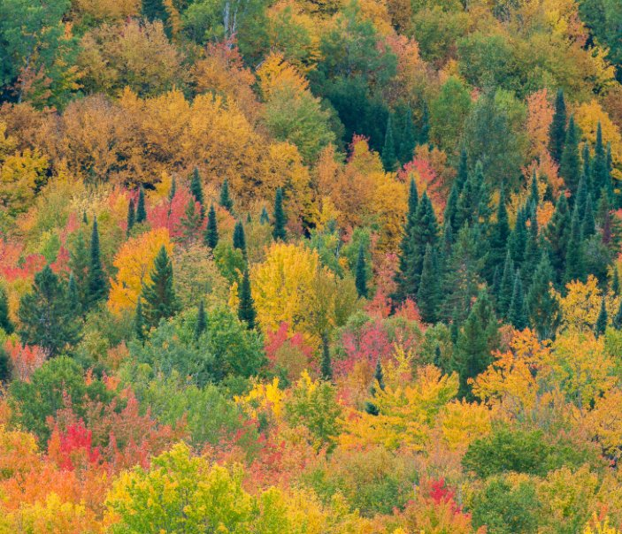 View Images of Nature by Eric Preston