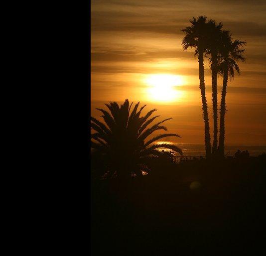 Bekijk Sunset Through The Palms op Jeff Phillip Whetstone