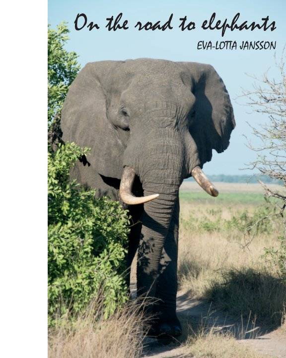 View On the road to elephants by Eva-Lotta Jansson