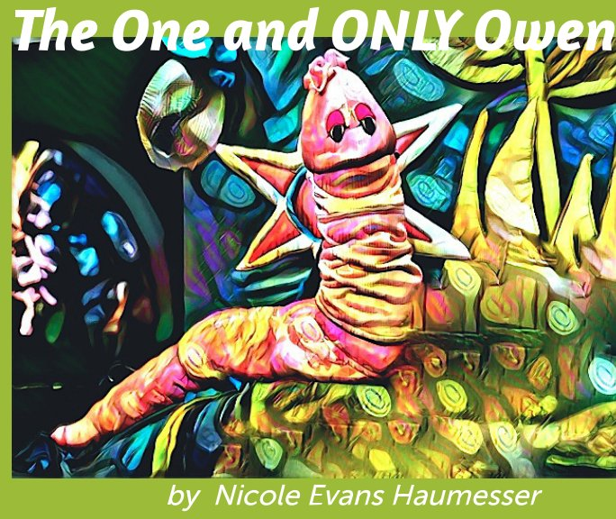 View The One and Only Owen by Nicole Evans Haumesser