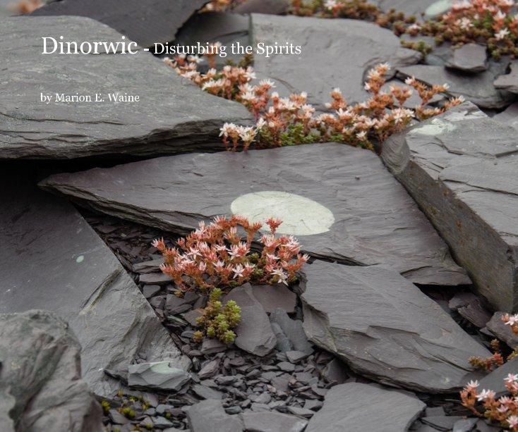 View Dinorwic - Disturbing the Spirits by Marion E. Waine