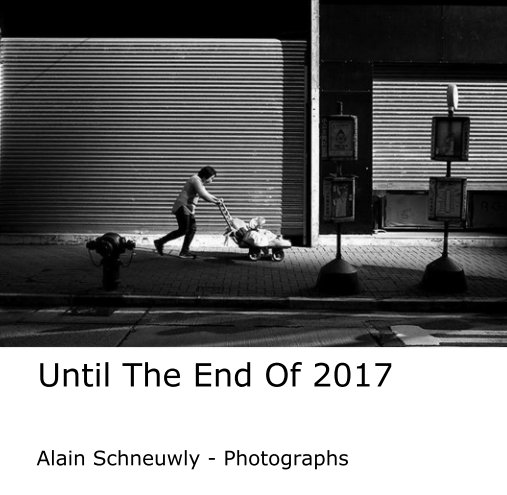 View Until The End Of 2017 by Alain Schneuwly