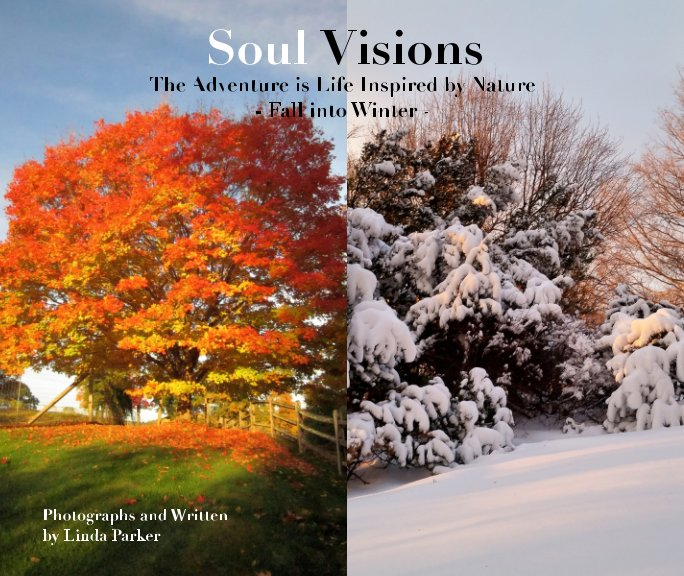 View Soul Visions by Linda Parker