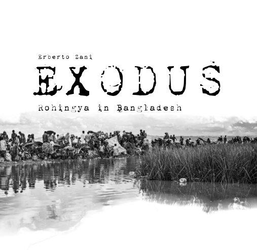 Visualizza Exodus di Erberto Zani