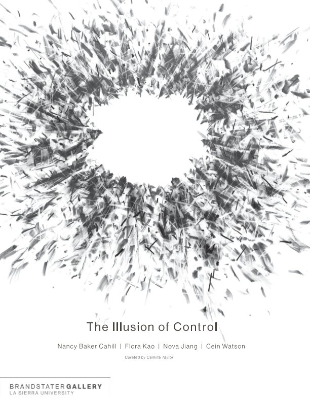 View The Illusion of Control by Tim Musso and Camilla Taylor