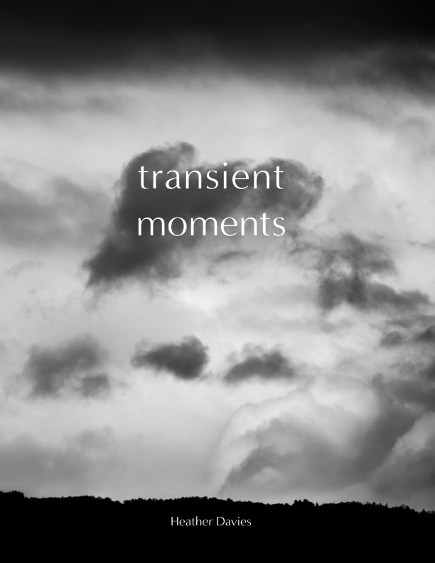 View Transient Moments by Heather Davies