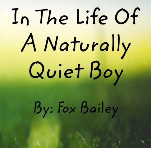 View In The Life Of A Naturally Quiet Boy by Fox Bailey