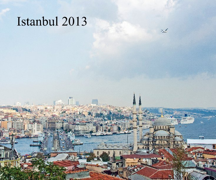 View Istanbul 2013 by Norbert Skibinski