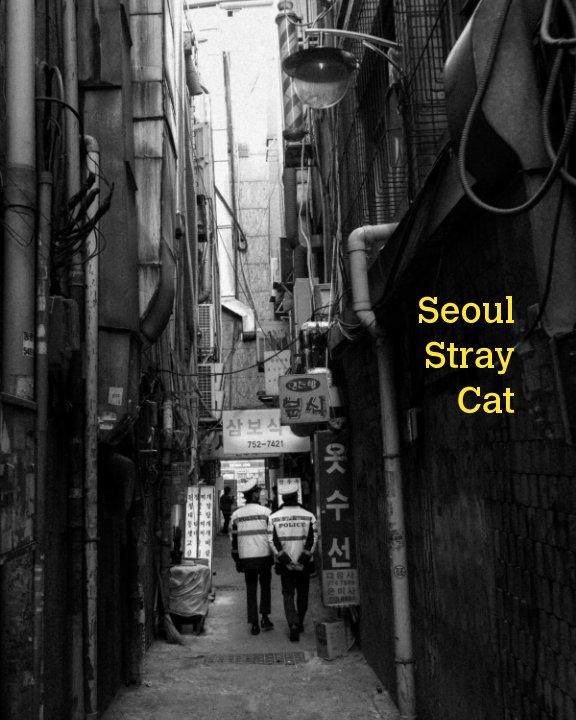 View Seoul Stray Cat by Daniel Haberkorn