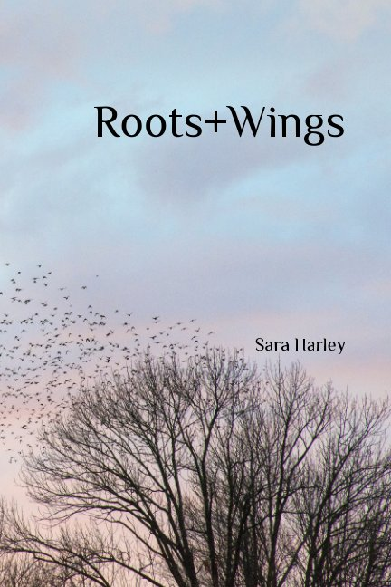 View Roots + Wings by Sara Harley