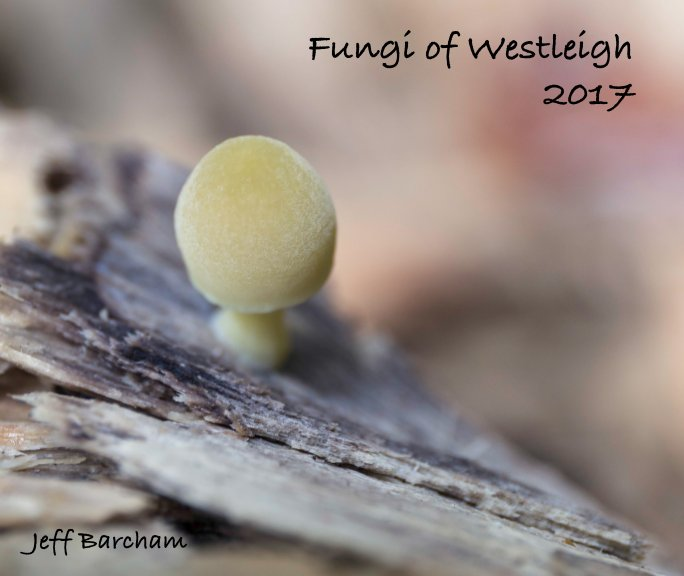 View Fungi of Westleigh 2017 by Jeff Barcham
