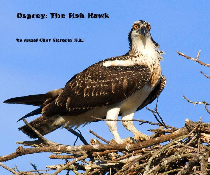 Bekijk Osprey: The Fish Hawk op Angel Cher Victoria (S.E.)