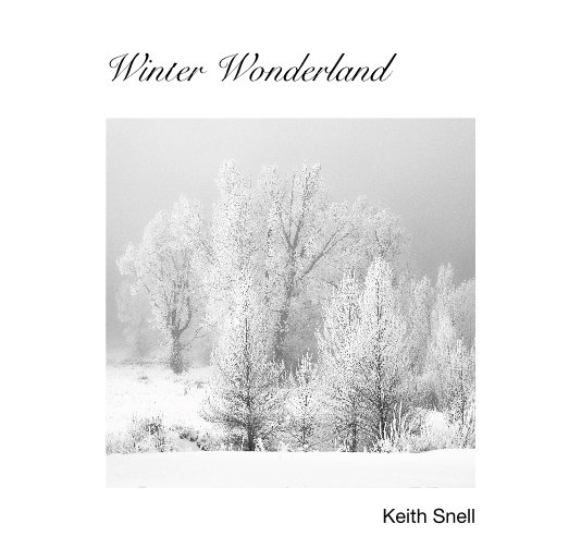 View Winter Wonderland by Keith Snell