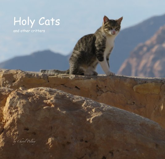View Holy Cats and other critters by Cheryl Pelkey