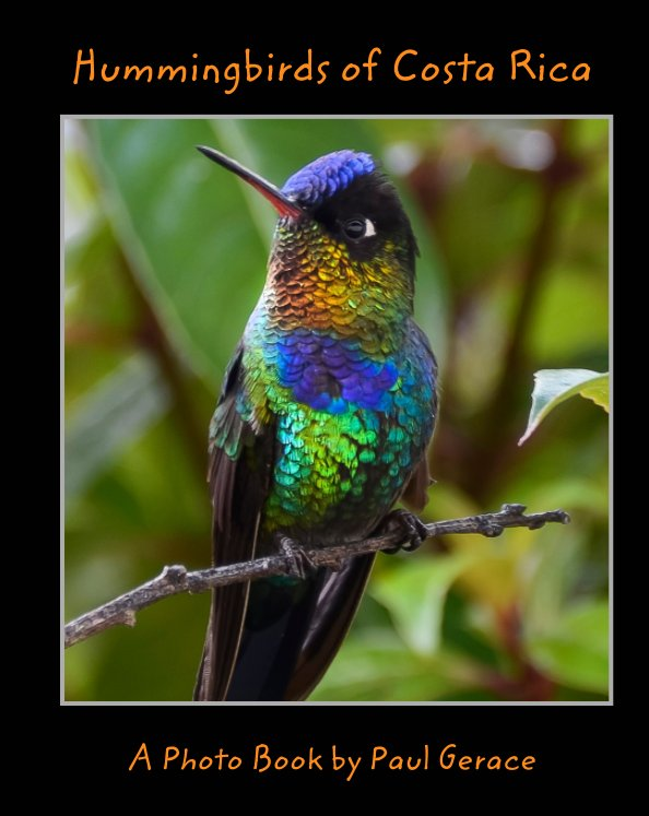 View Hummingbirds of Costa Rica             A Photo Book by Paul Gerace