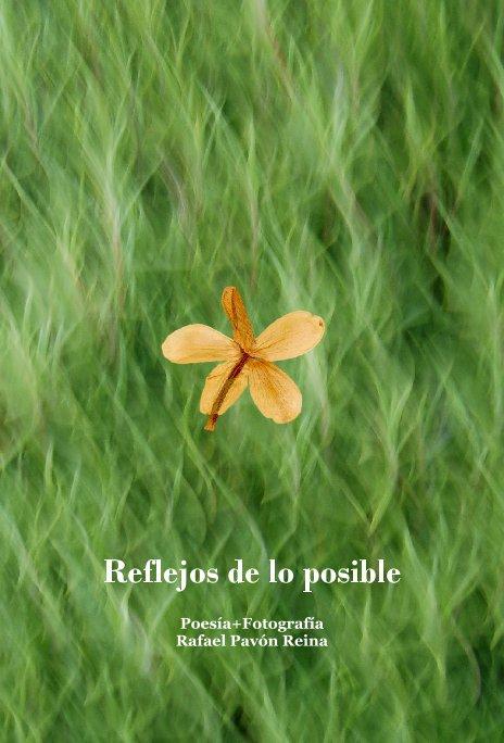 Ver Reflejos de lo posible por Rafael Pavón Reina