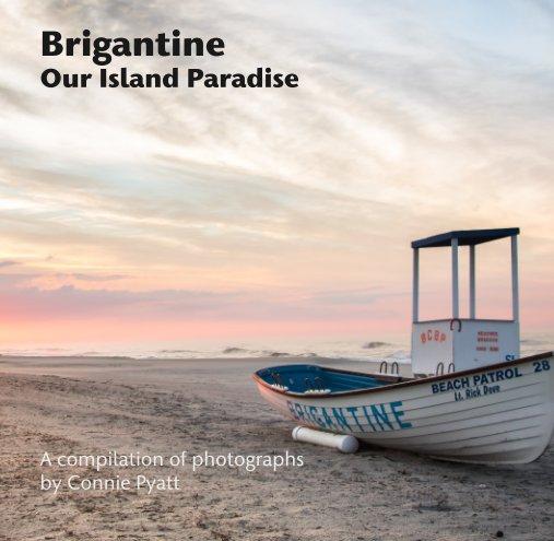View Brigantine Our Island Paradise by Connie Pyatt