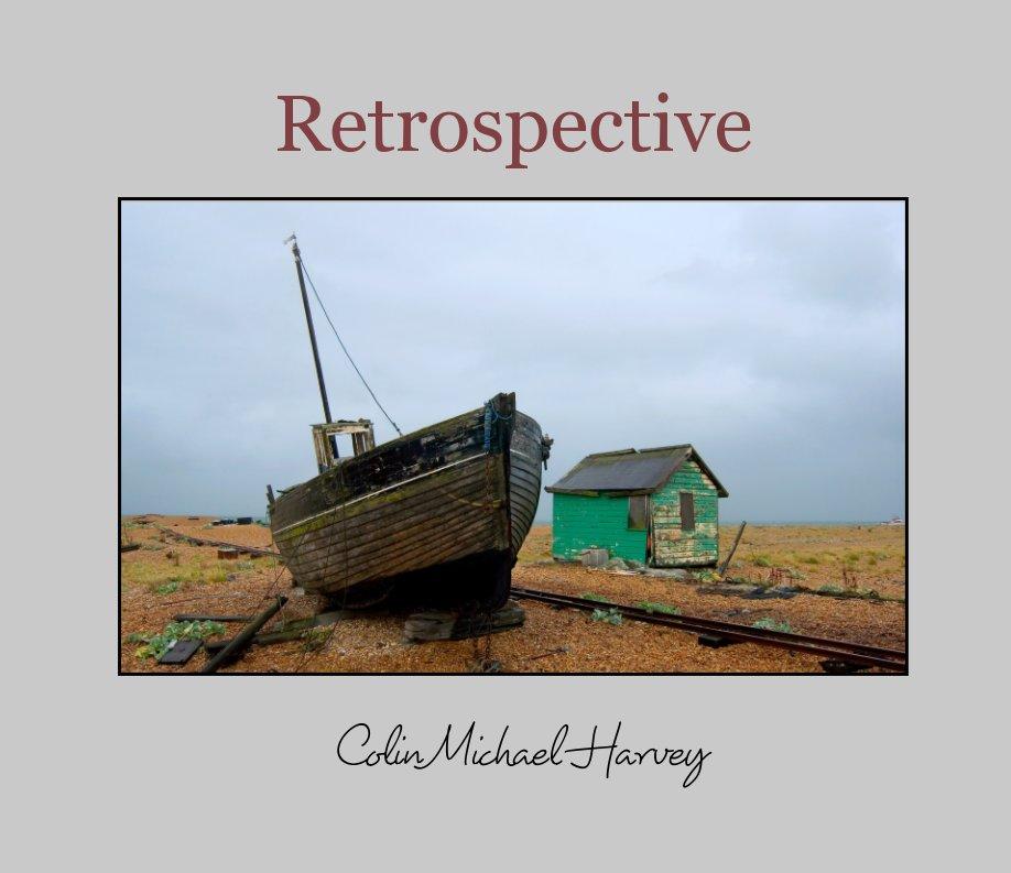 View Retrospective by Colin Michael Harvey