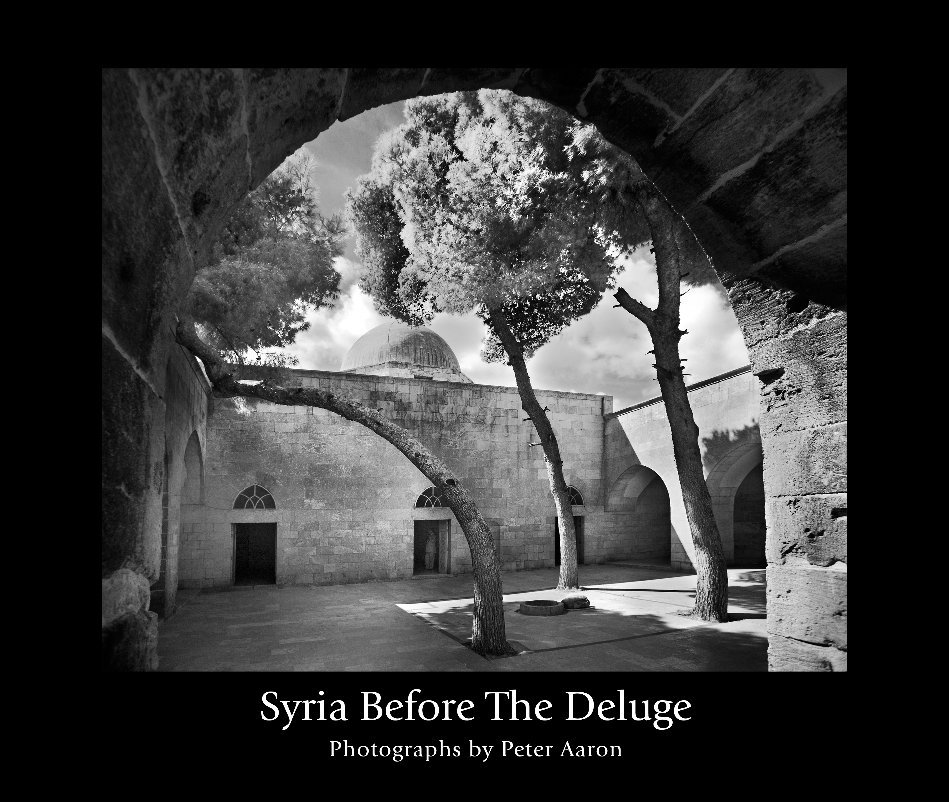 View Syria Before the Deluge by Peter Aaron