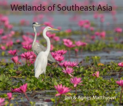 Wetlands Southeast Asia book cover