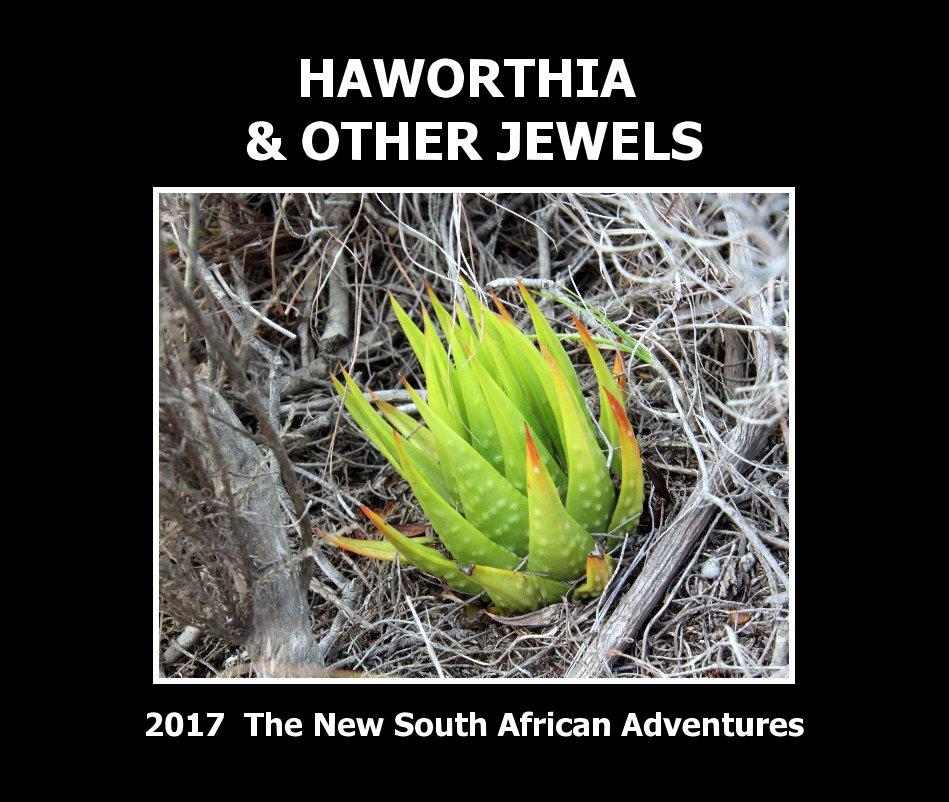 View Haworthia and other jewels by Jakub Jilemicky