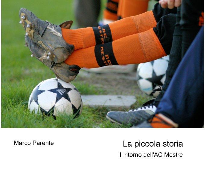 View La piccola storia by Marco Parente