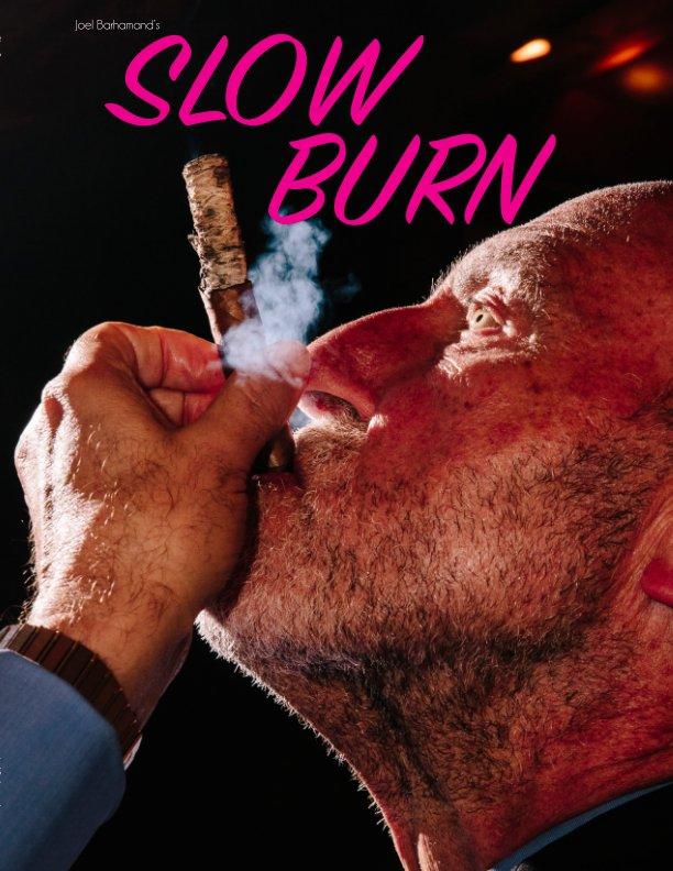 View Slow Burn by Joel Barhamand