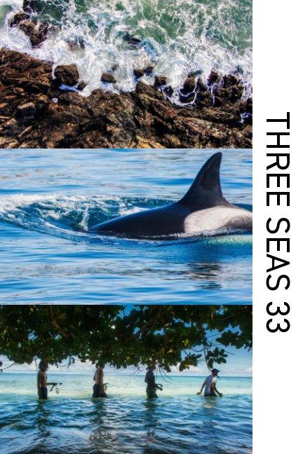 View Three Seas 33 by Tim Briggs