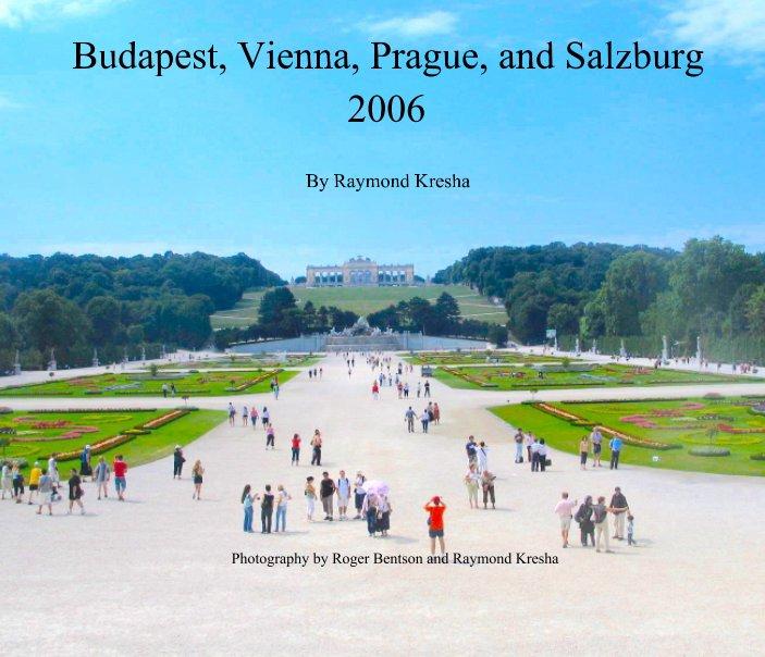 View Budapest, Vienna, Prague, and Salzburg by Raymond Kresha