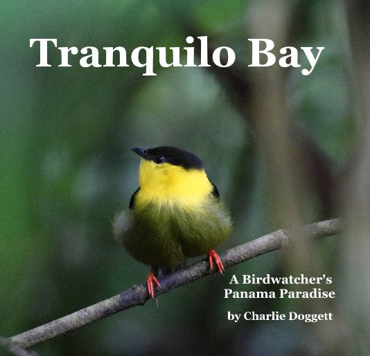 View Tranquilo Bay by Charlie Doggett